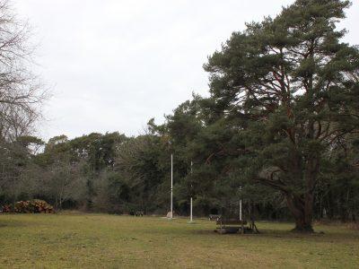 Lugnet Efter Stormen I Åhsbergska Hagen